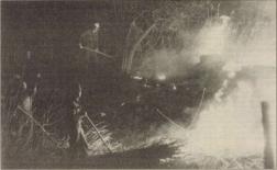 Tüzet oltanak 1993