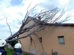Fa dőlt lakóházra Rédicsen