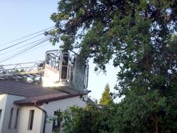 Fa dőlt telefonvezetékre Gellénházán